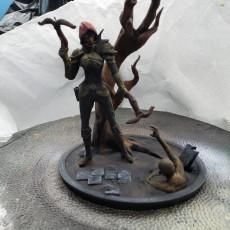 Picture of print of Demon Hunter - Diablo III