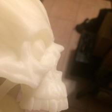Picture of print of Skull Tongue