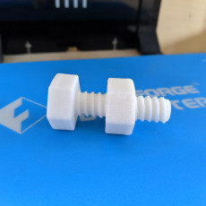 Picture of print of Screw