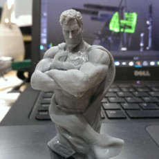 Picture of print of Superbust