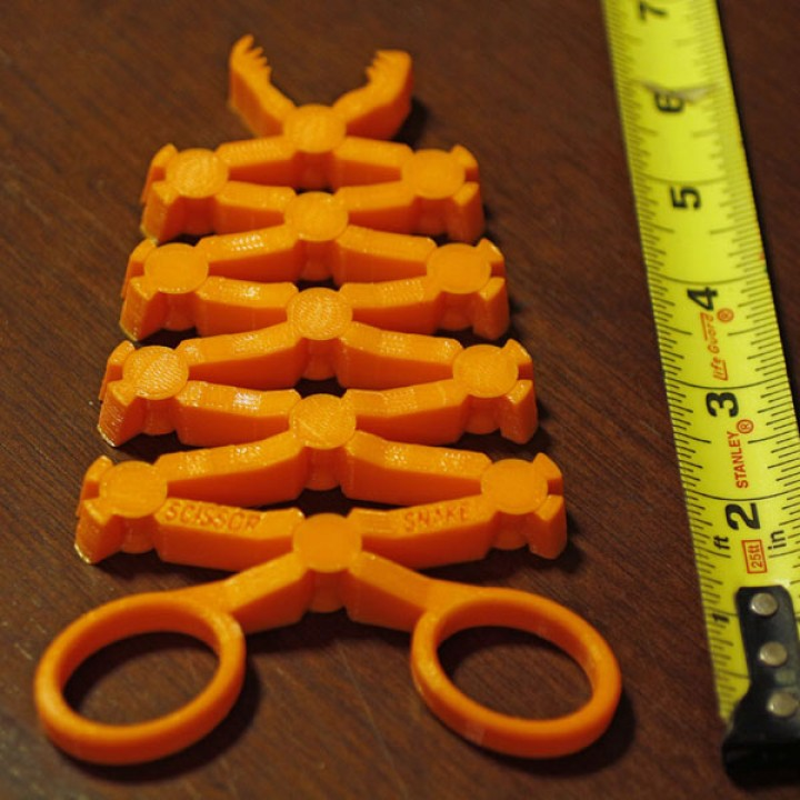 The Scissor Snake