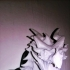 Alduin dragon Bust print image