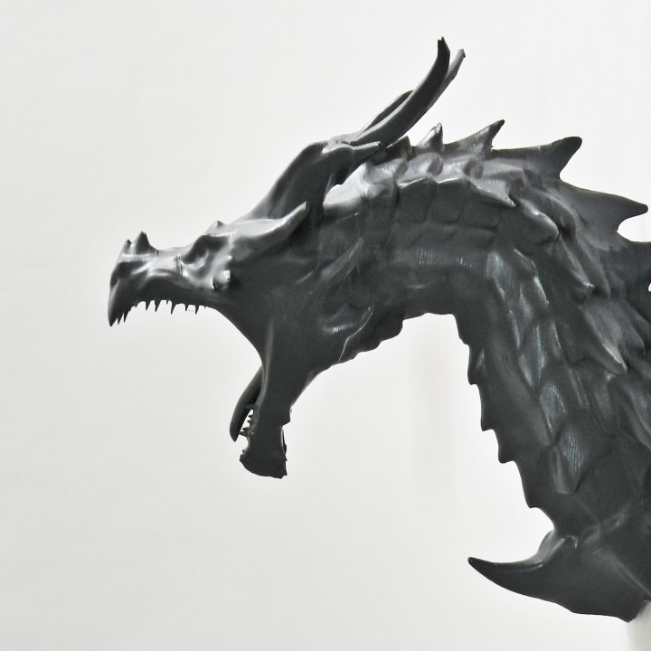 Picture of print of Alduin dragon Bust This print has been uploaded by Martin PMP