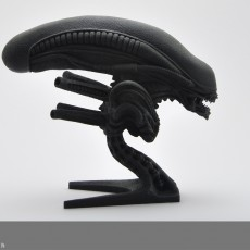 Picture of print of Alien bust
