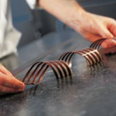 Picture of print of Chocolate comb pattern