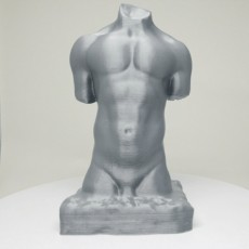 Picture of print of Torso of Banovic Strahinja at the V&A, London