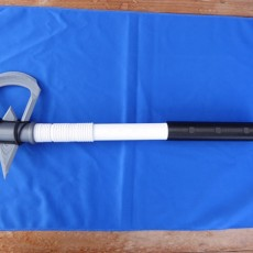 Picture of print of Assassins Creed Tomahawk