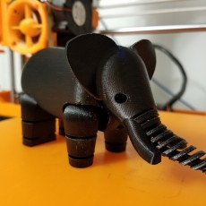 Picture of print of Elephant LFS
