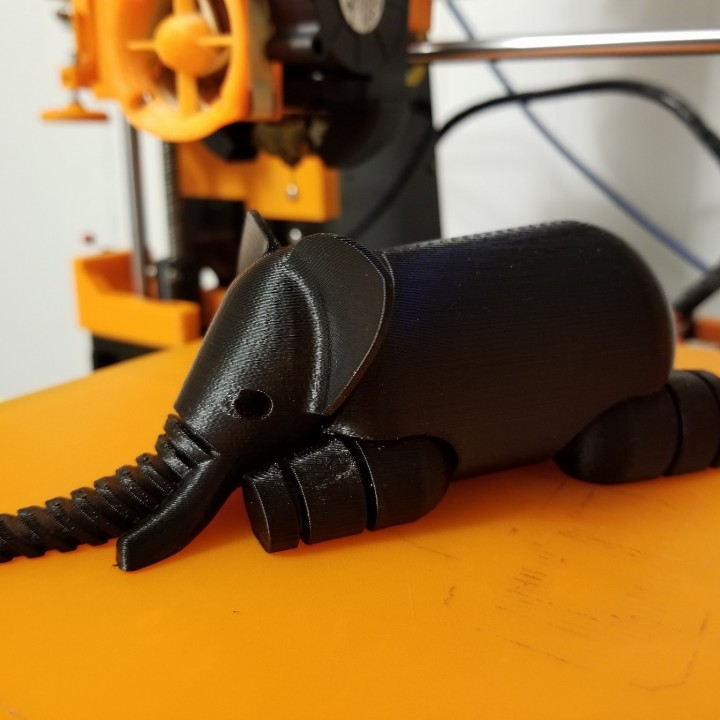 Picture of print of Elephant LFS This print has been uploaded by Eric Beirnes