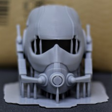 Picture of print of Ant man Mask