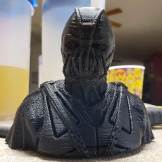 Picture of print of Dark Knight Rises Bane Mask