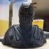 Dark Knight Rises Bane Mask print image