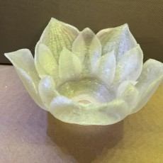 Picture of print of Lotus Flower Lampshade