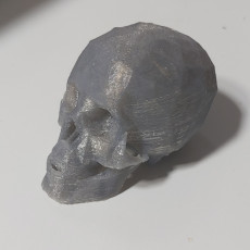 Picture of print of Skull This print has been uploaded by Kleber Jacinto