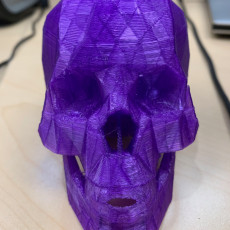 Picture of print of Skull