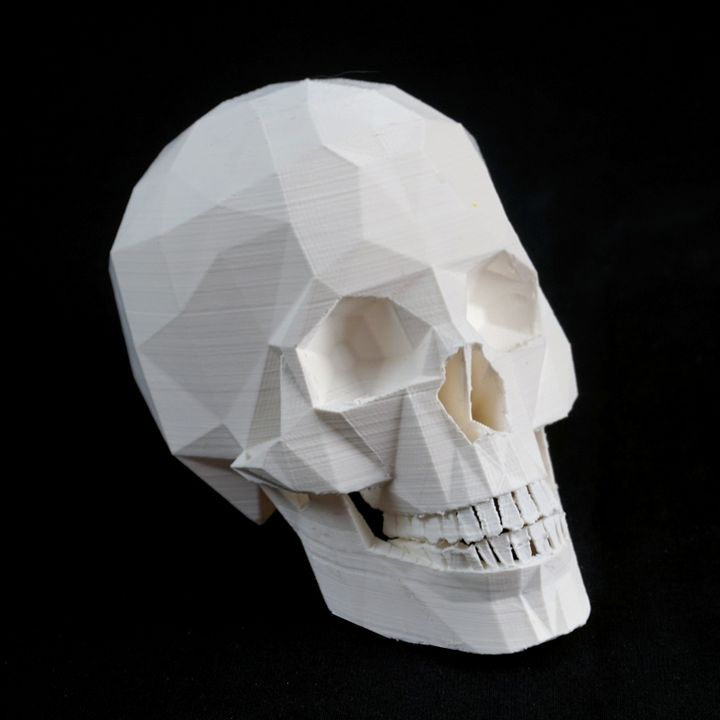 3d Printable Skull With Jaw By Paul Cummings