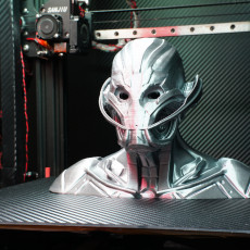 Picture of print of Ultron bust