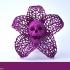 Skeletal Flower Pendant print image