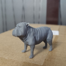 Picture of print of lockjaw