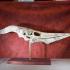 Pteranodon Skull print image