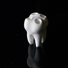 Picture of print of The Big Tooth 2.0 This print has been uploaded by Chimak 3D