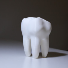 Picture of print of The Big Tooth 2.0 This print has been uploaded by Giulia Nallbani