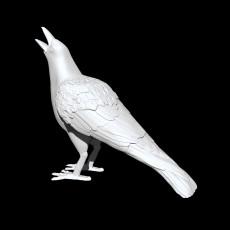 230x230 crow iso 1