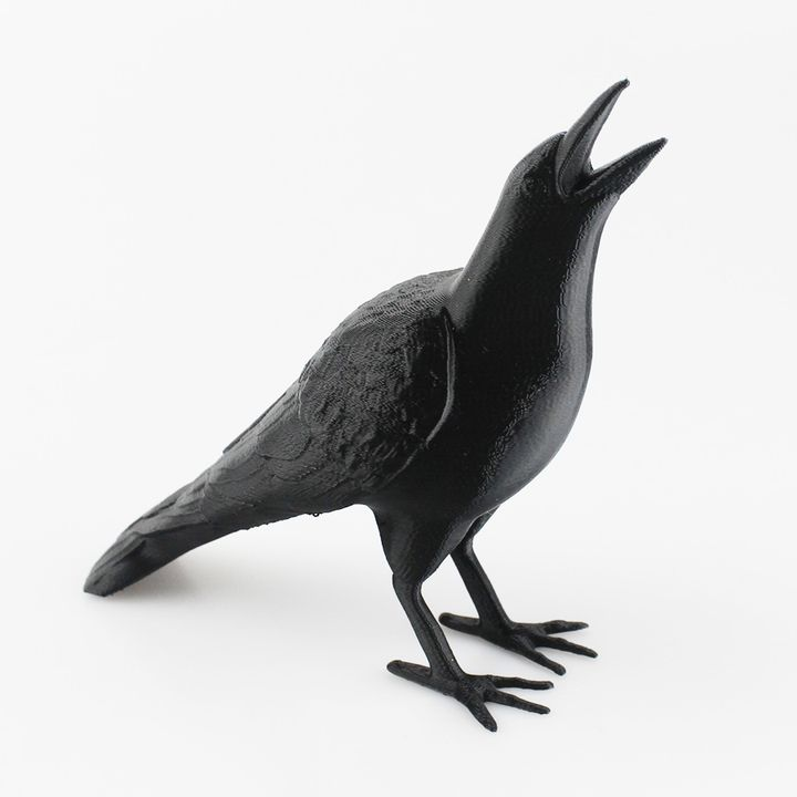 Crow - Support Free