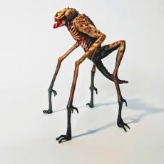 Picture of print of Alien Creature