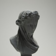 Picture of print of Veiled Lady at the Minneapolis Institute of Arts, USA