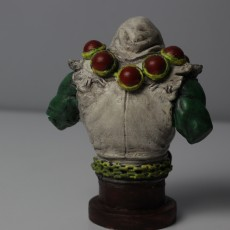 Picture of print of Thrall - Hearthstone / World Of Warcraft