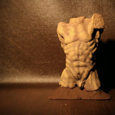 Picture of print of Torso of the falling man Lous XIV at the Rodin Museum, Paris, France