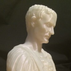 Picture of print of Julius Caesar at The Metropolitan Museum of Art, New York This print has been uploaded by Ashe Junius