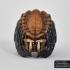 Predator Ring size 10 print image