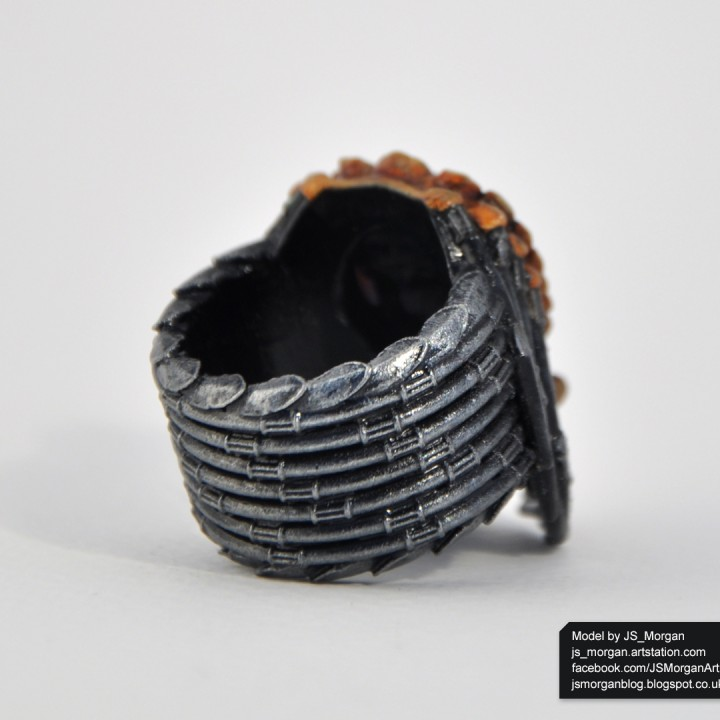 Picture of print of Predator Ring size 10 Esta impresión fue cargada por James Morgan