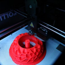 Picture of print of Voronoi mushroom lamp  (LQ)