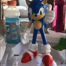 Picture of print of Sonic The Hedgehog