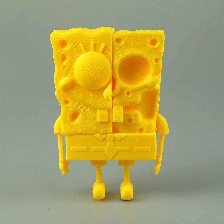 Spongebob Anatomy