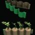 Green Pot for seeds print image