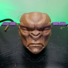 Picture of print of Monster Ogre head