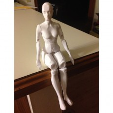 Picture of print of Articulated Figure - No Support