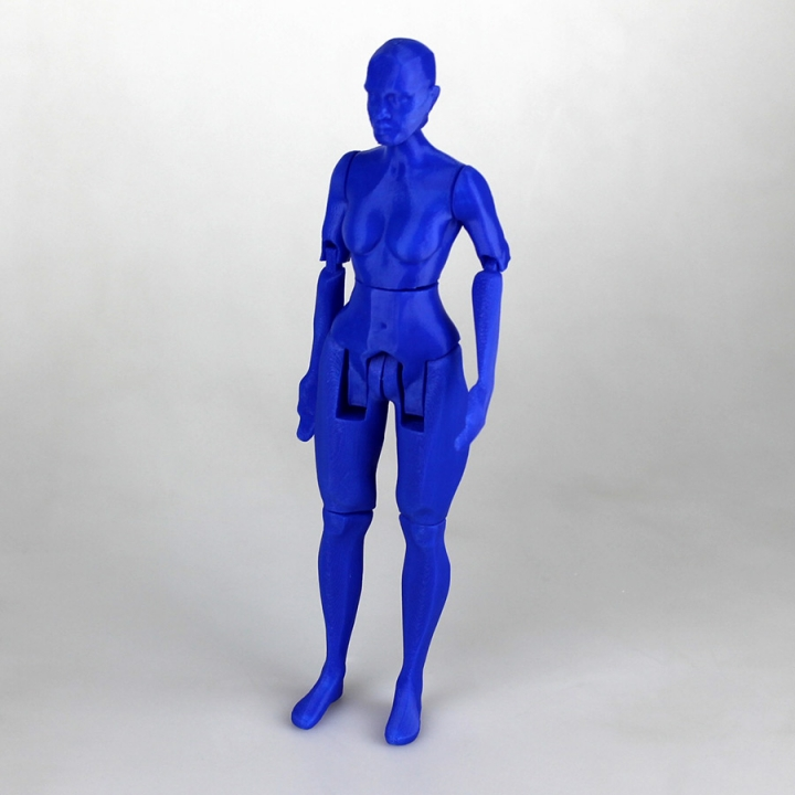 Articulated Figure - No Support