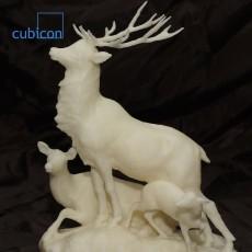 Picture of print of Herd of Deer in the Jardin du Luxembourg, Paris