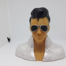 Picture of print of ELVIS