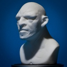 Picture of print of Troll bust sculpt