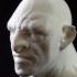 Troll bust sculpt image
