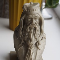 Picture of print of Albus Dumbledore Bust This print has been uploaded by Guinhill
