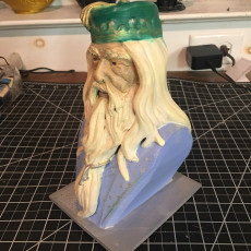 Picture of print of Albus Dumbledore Bust Questa stampa è stata caricata da Mark Brown