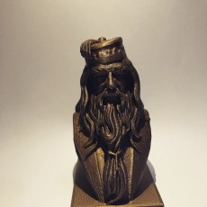Picture of print of Albus Dumbledore Bust This print has been uploaded by tawatchai arthonkij