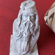 Picture of print of Albus Dumbledore Bust This print has been uploaded by Steve Bond